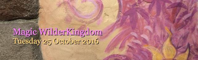 Magic WilderKingdom - 25 Oct 2016