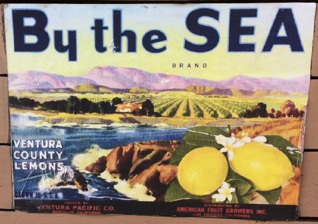 Ventura County Lemons