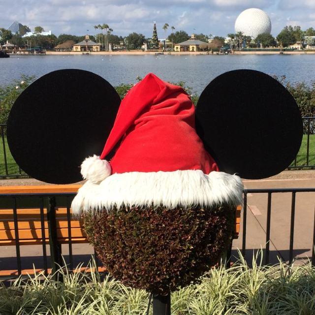 Mickey-Santa topiary