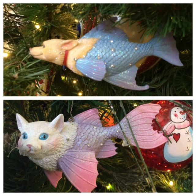Dogfish & Catfish