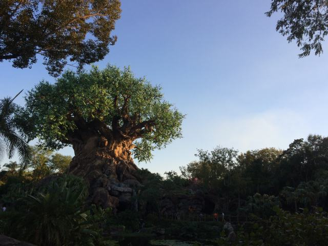 Tree of Life again