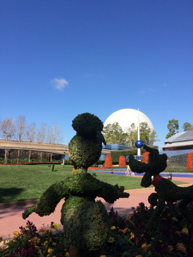 Donald and Pluto topiaries