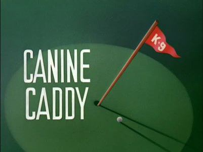 Canine Caddy