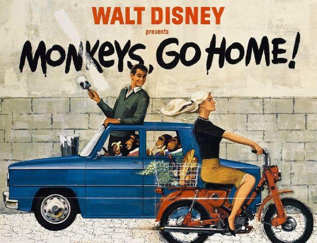 Monkeys Go Home!