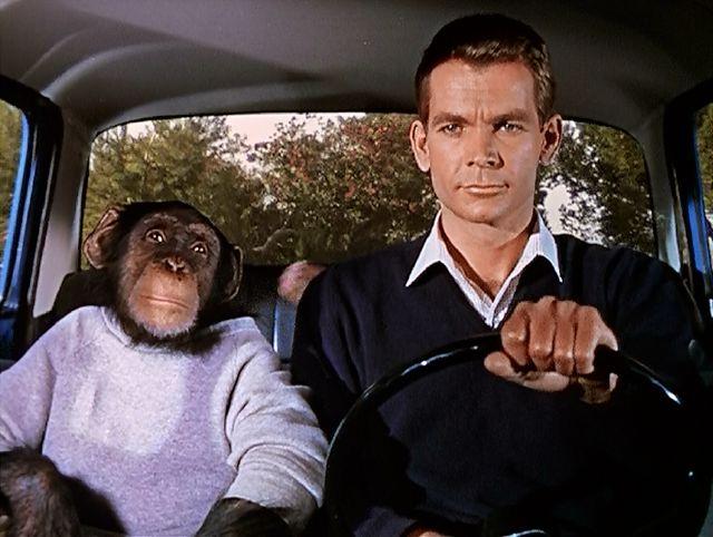 Dean Jones & monkey