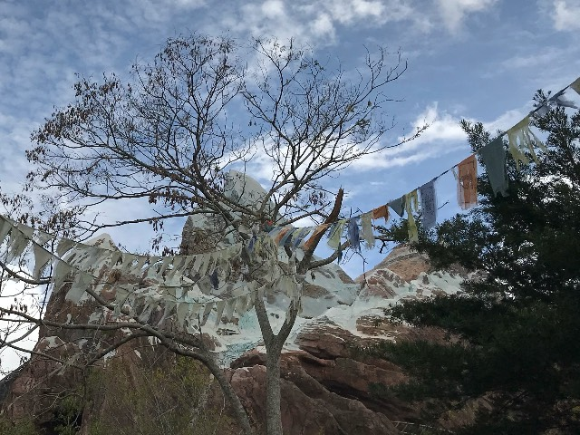 Expedition Everest - Are we there yeti?