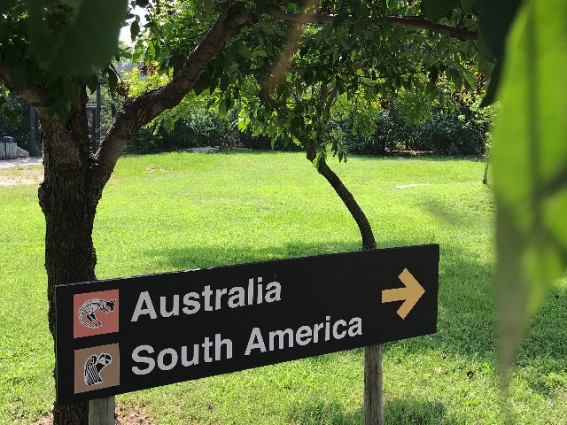 Australia and South America