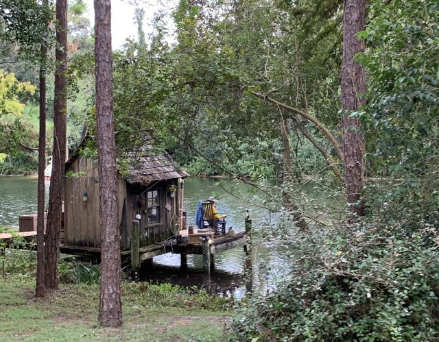 at Alligator Swamp