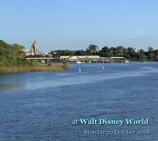 at Walt Disney World