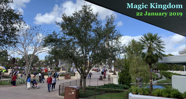 Magic Kingdom - 22 January 2019