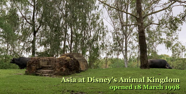 Asia at Disney's Animal Kingdom